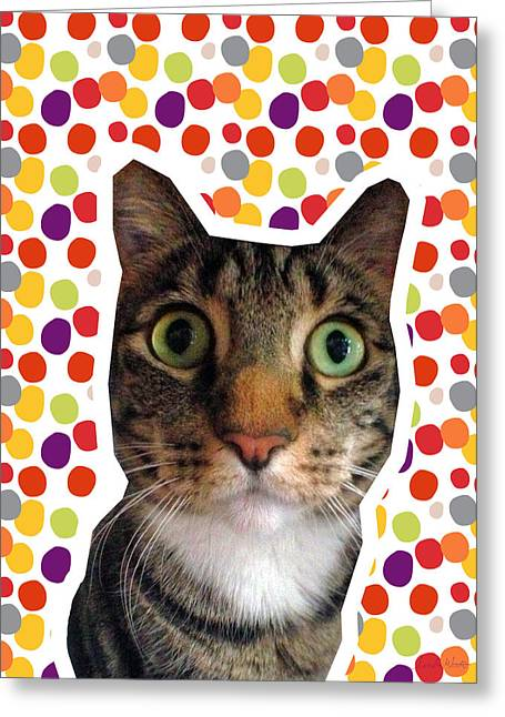 Whiskers Greeting Cards - Party Animal - Smaller Cat with Confetti Greeting Card by Linda Woods