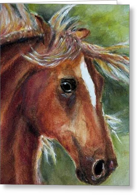 Paso Fino Stallion Greeting Cards - Paso Fino Greeting Card by Carolyn Gray