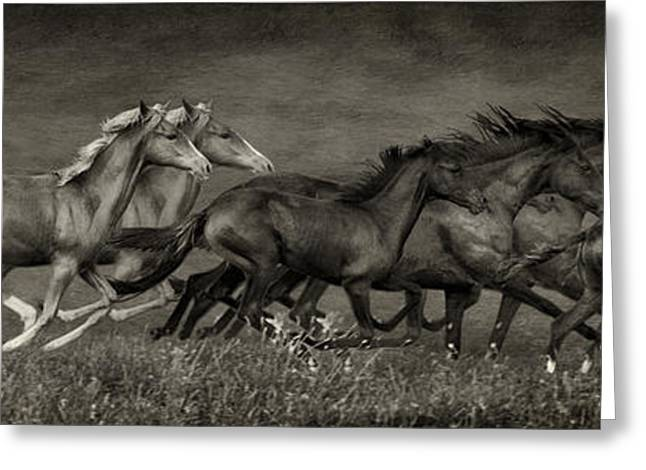 The Horse Greeting Cards - Paso Peruvian Horses on the Run Greeting Card by Priscilla Burgers