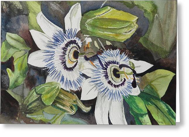 Passiflora Paintings Greeting Cards - Passiflora Cerulia Greeting Card by Betty-Anne McDonald