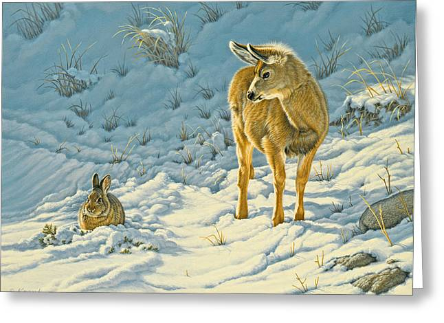 Fawn Greeting Cards - Passing Curiosity Greeting Card by Paul Krapf