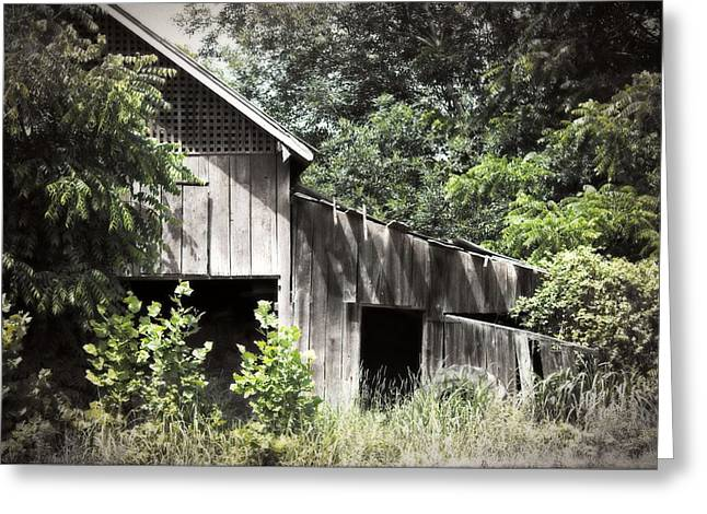 Franklin Farm Greeting Cards - Passing of Time Greeting Card by Tom Gari Gallery-Three-Photography