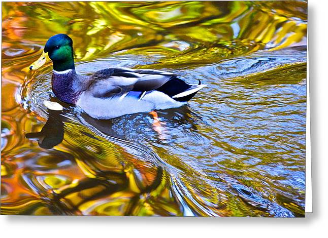Oak Creek Greeting Cards - Passing Through Greeting Card by Frozen in Time Fine Art Photography