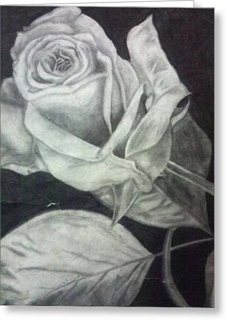 Light And Dark Drawings Greeting Cards - Passion Aged Greeting Card by Jessica  Jones