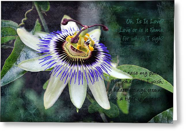Passiflora Digital Art Greeting Cards - Passion Flower 1 Greeting Card by Helene U Taylor