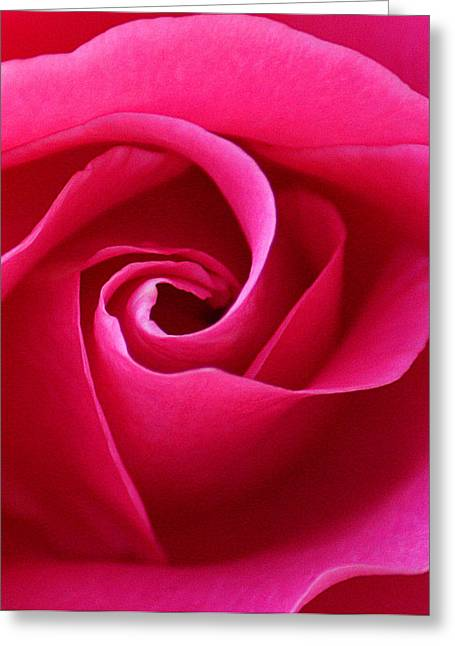 Fuschia Greeting Cards - Passion Greeting Card by  The Art Of Marilyn Ridoutt-Greene