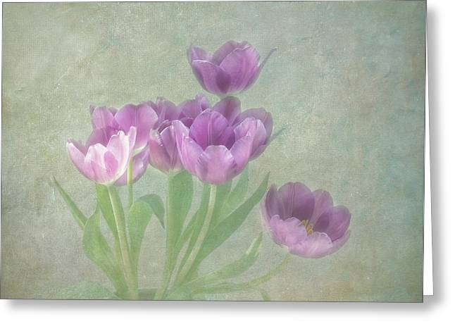Lilac Tulip Flower Greeting Cards - Passionately Purple Greeting Card by Kim Hojnacki