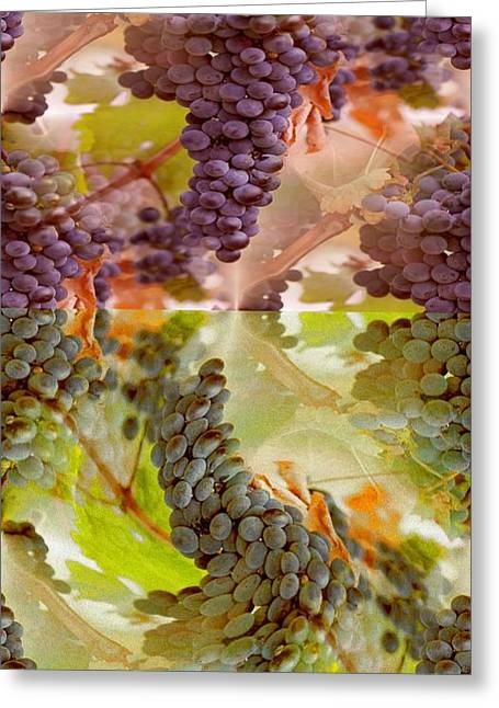 Greece Vineyards Greeting Cards - Passionate Squeeze Greeting Card by PainterArtist FIN