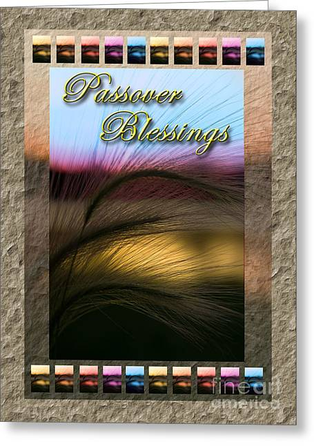 Wildlife Celebration Greeting Cards - Passover Blessings Grass Sunset Greeting Card by Jeanette K