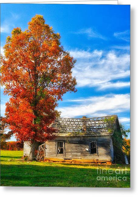 Pasture Framed Prints Greeting Cards - Past its Prime I - A Barn in the Fall Greeting Card by Dan Carmichael