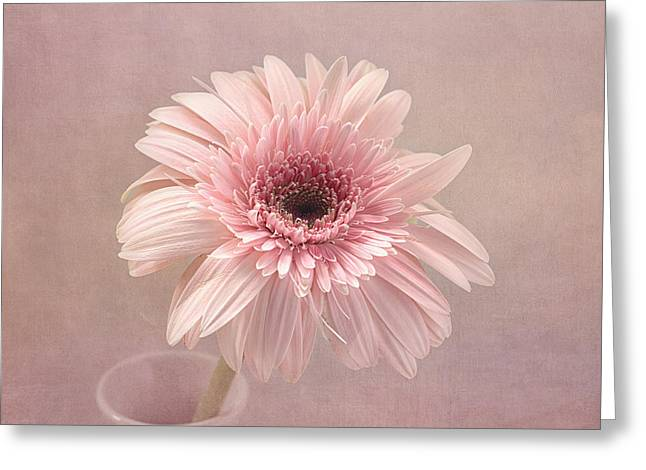 Textured Floral Greeting Cards - Pastel Dreams Greeting Card by Kim Hojnacki