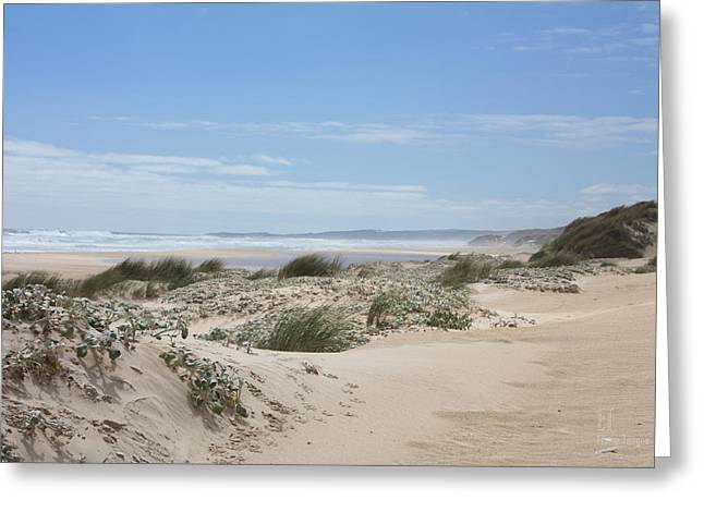 Pastel Dunes Greeting Card by Elaine Teague