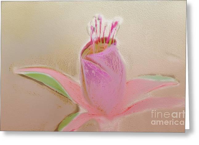 Stamen Digital Art Greeting Cards - Pastel Flower Greeting Card by Terry Weaver