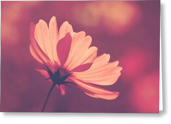 Mother Gift Mixed Media Greeting Cards - Pastel Haze Greeting Card by Georgiana Romanovna