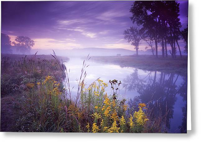 Hack-ma-tack National Wildlife Refuge Greeting Cards - Pastel Morning Greeting Card by Ray Mathis