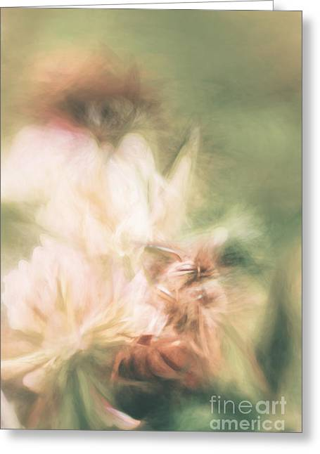 Hand Drawn Greeting Cards - Pastel painting of a honeybee insect  Greeting Card by Ryan Jorgensen
