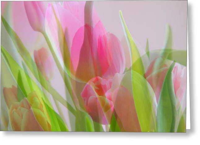 March Greeting Cards - Pastel Petals Greeting Card by Karen Cook