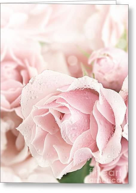 S-layer Greeting Cards - Pastel Pink Greeting Card by Stephanie Frey