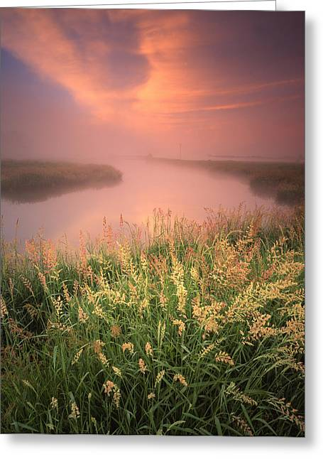 Hack-ma-tack National Wildlife Refuge Greeting Cards - Pastel Portrait Greeting Card by Ray Mathis