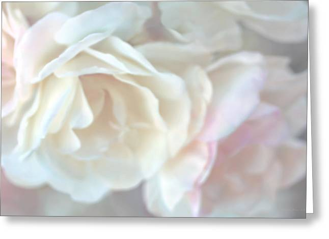 Ivory Rose Greeting Cards - Pastel Rose Flowers Greeting Card by Jennie Marie Schell