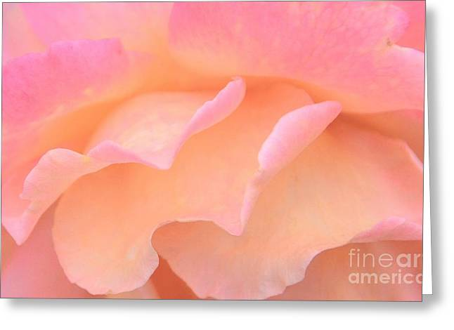 Struckle Greeting Cards - Pastel Ruffles Greeting Card by Kathleen Struckle