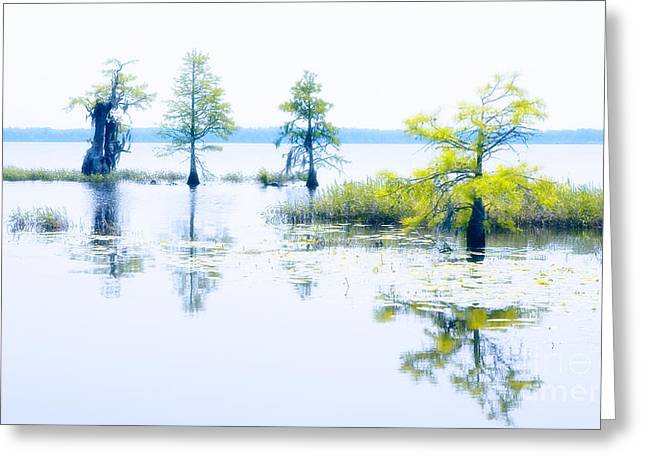 Photographers Mixed Media Greeting Cards - Pastel Serenity on the North Carolina Coast Greeting Card by Dan Carmichael