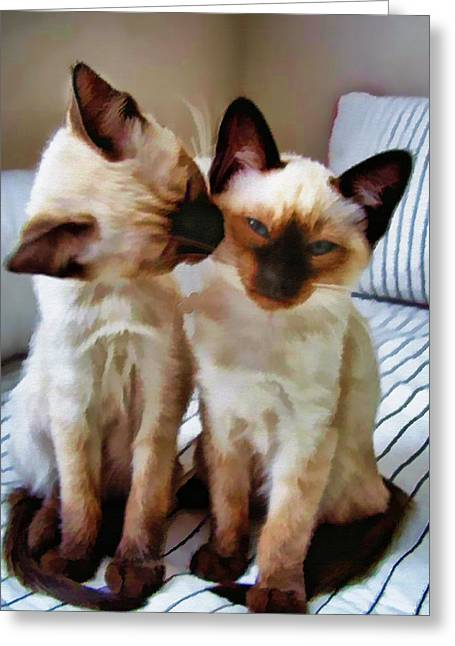 Litter Mates Greeting Cards - Pastel Sketch of Siamese Love Greeting Card by Elaine Plesser