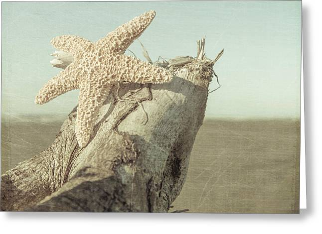 Star Fish Greeting Cards - Pastel Starfish Greeting Card by Lucid Mood