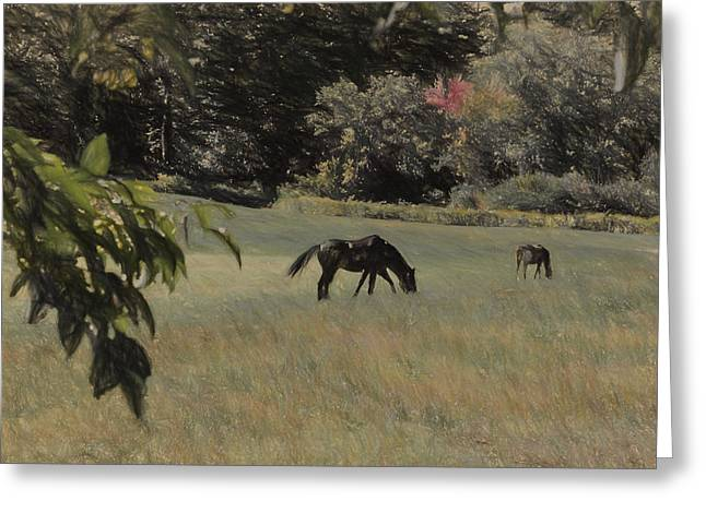 Sudbury Ma Greeting Cards - Pastoral Greeting Card by Lee Fortier