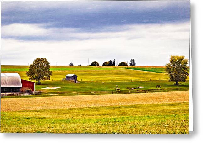 Shed Digital Greeting Cards - Pastoral Pennsylvania - Paint Greeting Card by Steve Harrington