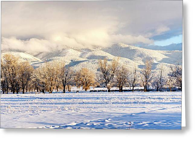 Pasture Land Covered In Snow With Taos Greeting Card by Panoramic Images