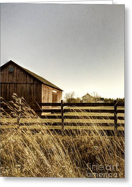 Painted Wood Greeting Cards - Pasture Greeting Card by Margie Hurwich