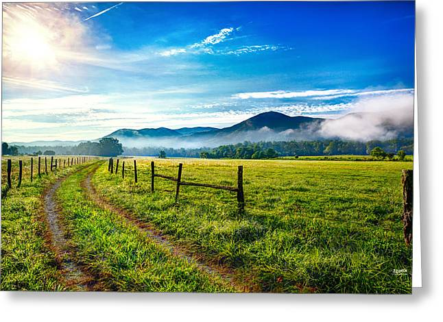 Mountain Road Greeting Cards - Pasture Road In Cades Cove Greeting Card by Steven Llorca