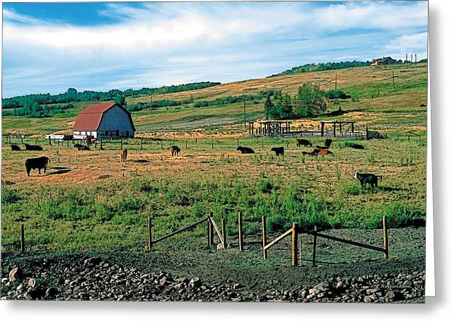 Nostalgic Greeting Cards - Pasture Greeting Card by Terry Reynoldson