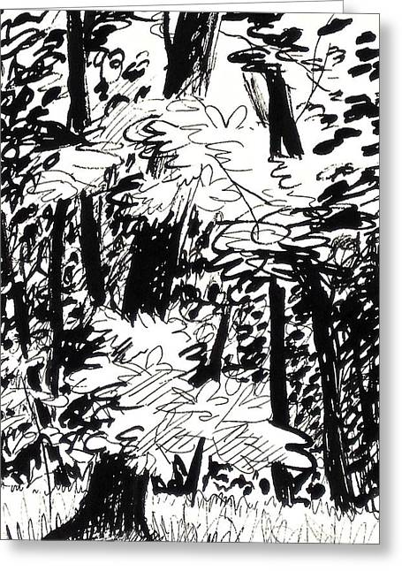 Woodland Scenes Drawings Greeting Cards - Patch of Sunlight in the Woods Greeting Card by Deborah Dendler