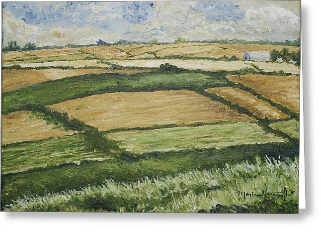 Patchwork Fields Greeting Card by Monica Veraguth