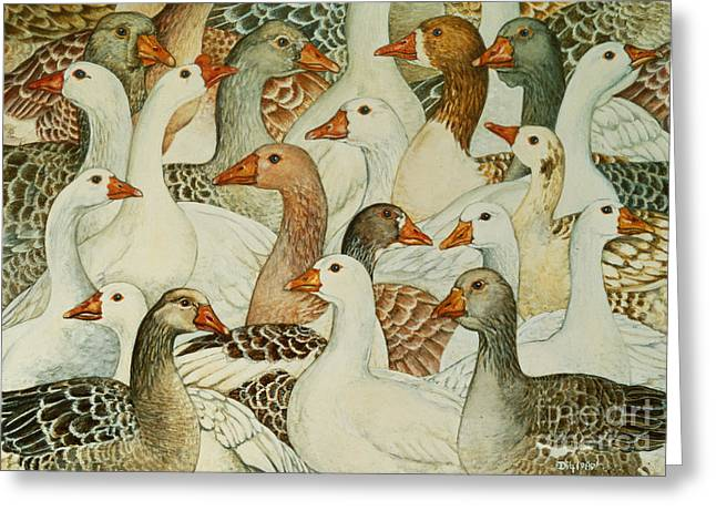Geese Paintings Greeting Cards - Patchwork Geese Greeting Card by Ditz