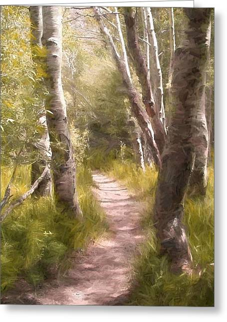 Path 1 Greeting Card by Pamela Cooper
