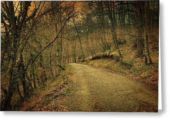 Romanticism Greeting Cards - Path II Greeting Card by Taylan Soyturk