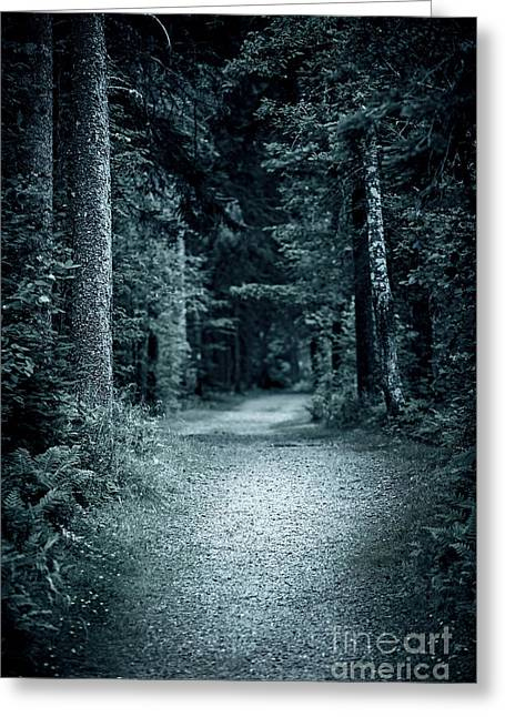 Hiking Greeting Cards - Path in night forest Greeting Card by Elena Elisseeva