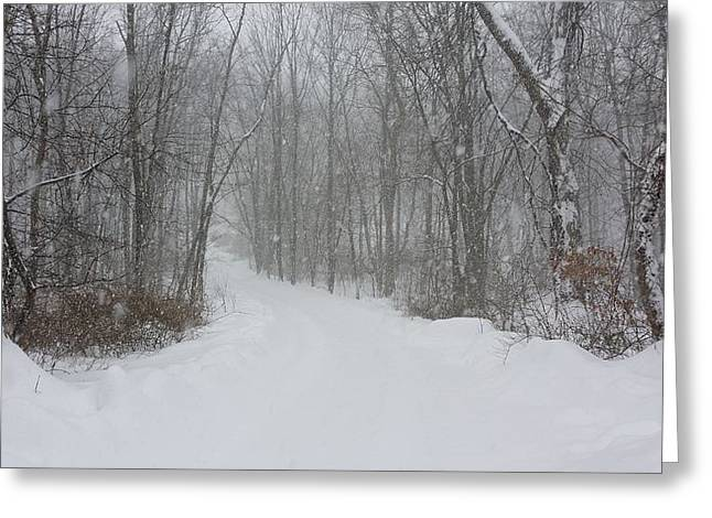 Senic View Greeting Cards - Path Less Taken Greeting Card by Bradford j Cole