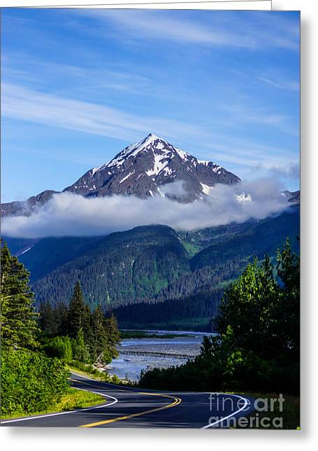 Mountain Valley Greeting Cards - Path through Alaska Greeting Card by Jennifer White