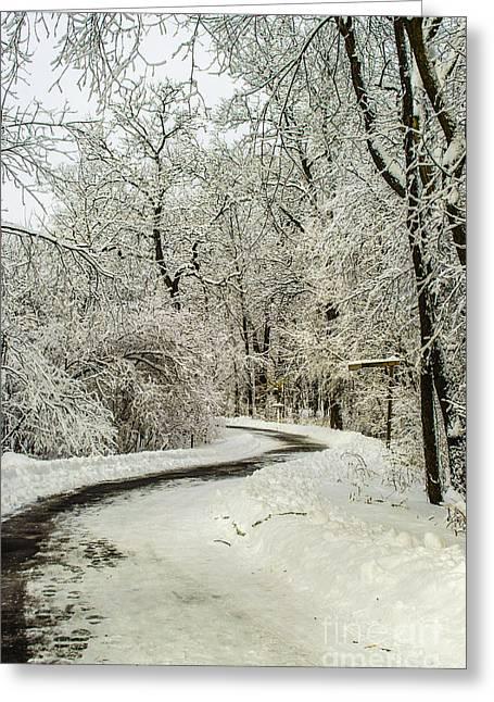 Winter Storm Nemo Greeting Cards - Path Through Nemo Snow Greeting Card by Deborah Smolinske