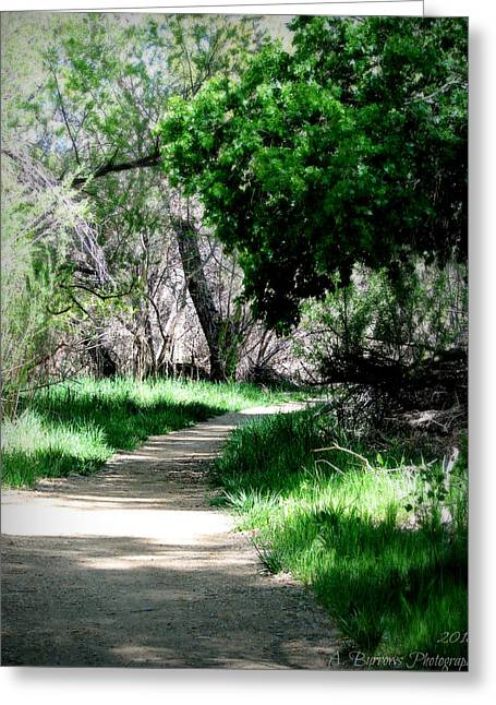 Watson Lake Greeting Cards - Path Through the Cottonwoods Greeting Card by Aaron Burrows
