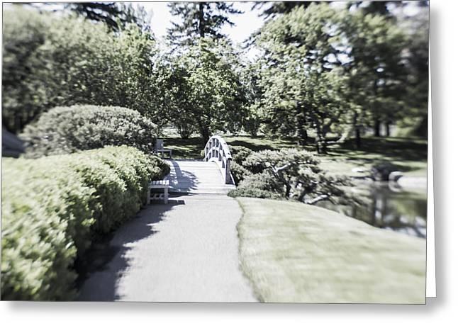 Infer Greeting Cards - Path Through the Garden Greeting Card by Dan Panattoni