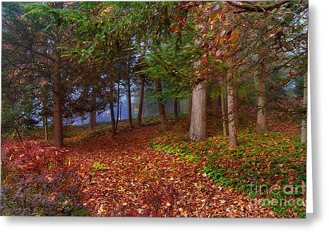 Path To A Fairytale Greeting Card by A New Focus Photography