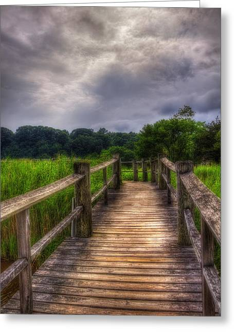 Westport Ct Greeting Cards - Path to Gorham Island Greeting Card by Joann Vitali