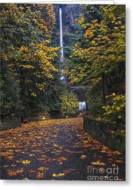 Landscape. Scenic Greeting Cards - Path to Multnomah Falls Greeting Card by Mark Kiver