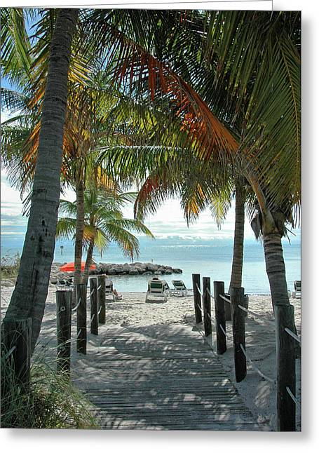 Tropical Trees Greeting Cards - Path To Smathers Beach - Key West Greeting Card by Frank Mari