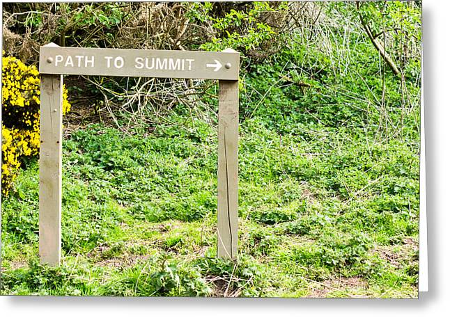 Navigate Greeting Cards - Path to summit Greeting Card by Tom Gowanlock